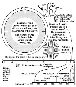 If you now realize that geologic time is too vast to truly comprehend, then you are primed to understand the evolution of our planet and its life.