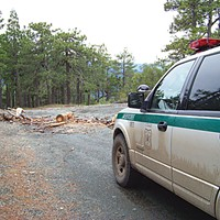 Illegal wood cutting is rampant on the Six Rivers National Forest. Many get away with it. But if Bobby Phillips catches someone cutting wood without a permit, he's apt to make him unload the wood on the spot, and of course cite him. Photo by Heidi Walters