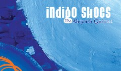 <em>Indigo Shoes</em>