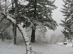 more-humboldt-county-snow.jpeg