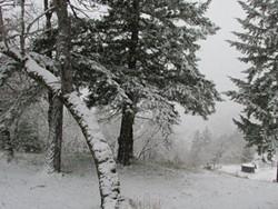more-humboldt-county-snow.jpeg