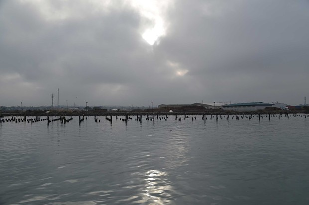 Pilings are nearly submerged south of the Wharfinger dock. - GRANT SCOTT-GOFORTH