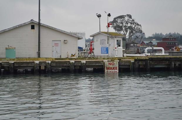 """No Wake Zone"" at the Chevron Terminal dock. - GRANT SCOTT-GOFORTH"