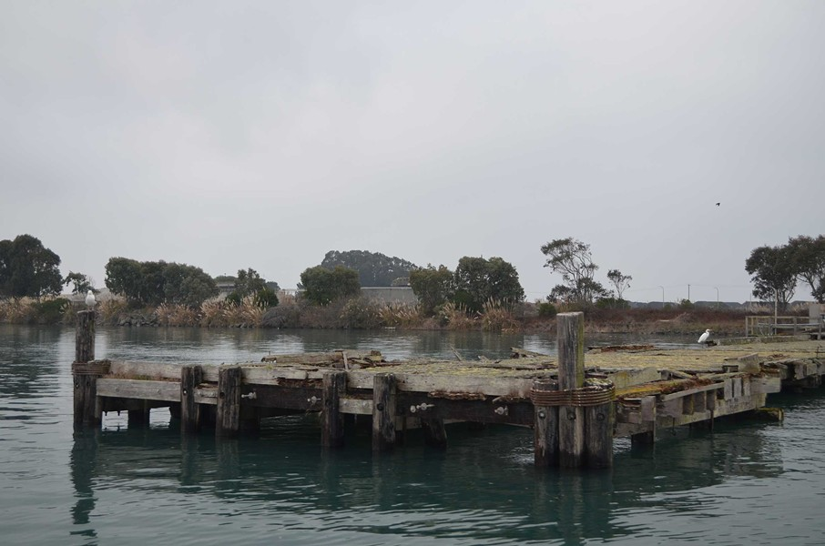 You can't see the top of this dock from the Baykeeper boat, Herbelin explained, except during king tides. - GRANT SCOTT-GOFORTH