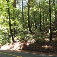 Roads and Redwoods location of triangular cut at post mile 1.34. photo courtesy caltrans.