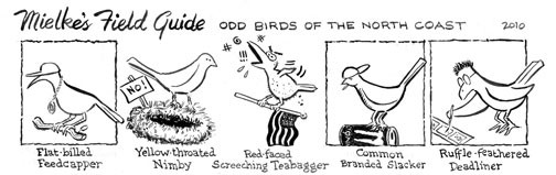 Mielke's Field Guide: Odd Birds Of The North Coast