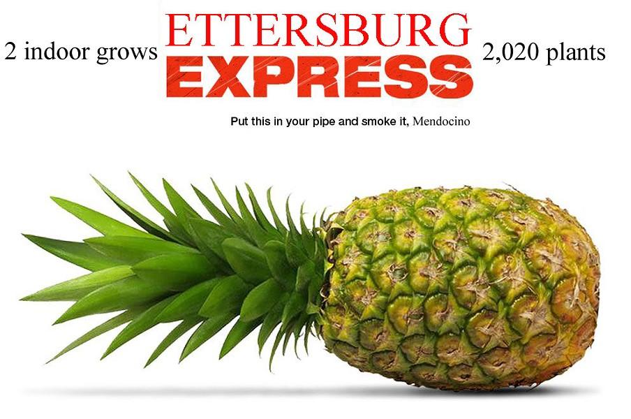 ettersburg_express02.jpg_copy.jpg