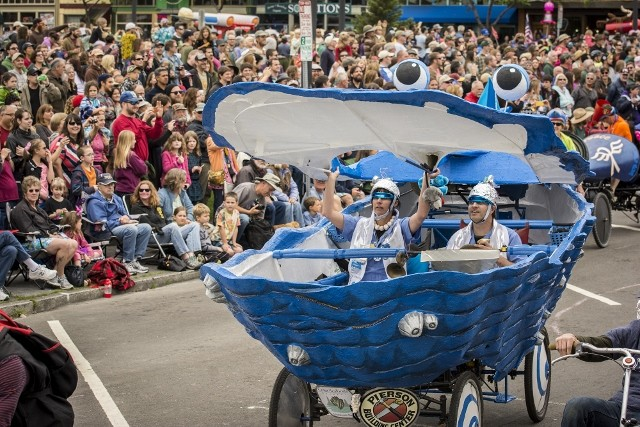 The Blue Oyster Cult nears the starting line on the Arcata Plaza at the Kinetic Grand Championship 2014. - MARK LARSON