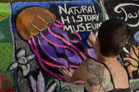 natl-history-museum-9753-450.jpg