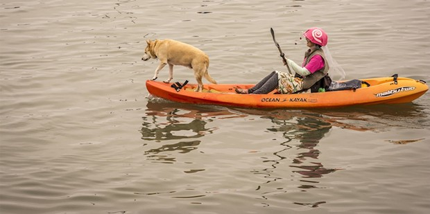Other spectators took to the water. - MARK LARSON