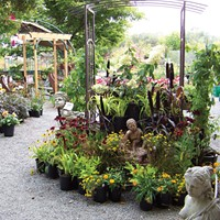 Best 'Garden Supply' Store