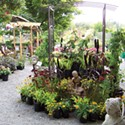 Best 'Garden Supply' Store