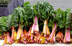 PHOTO BY SIMONA CARINI - Rainbow chard