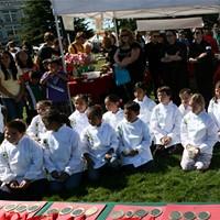 Salsa Chefs: Rising Stars