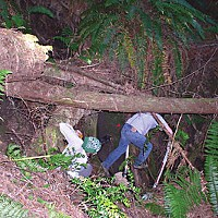 Saving Sam Sam and another field tech measuring headcuts in Caspar Creek, near Fort Bragg, as part of the Redwood Sciences Lab's study of the movement of sediments in the watershed. Photo courtesy Sue Hilton, Redwood Sciences Lab