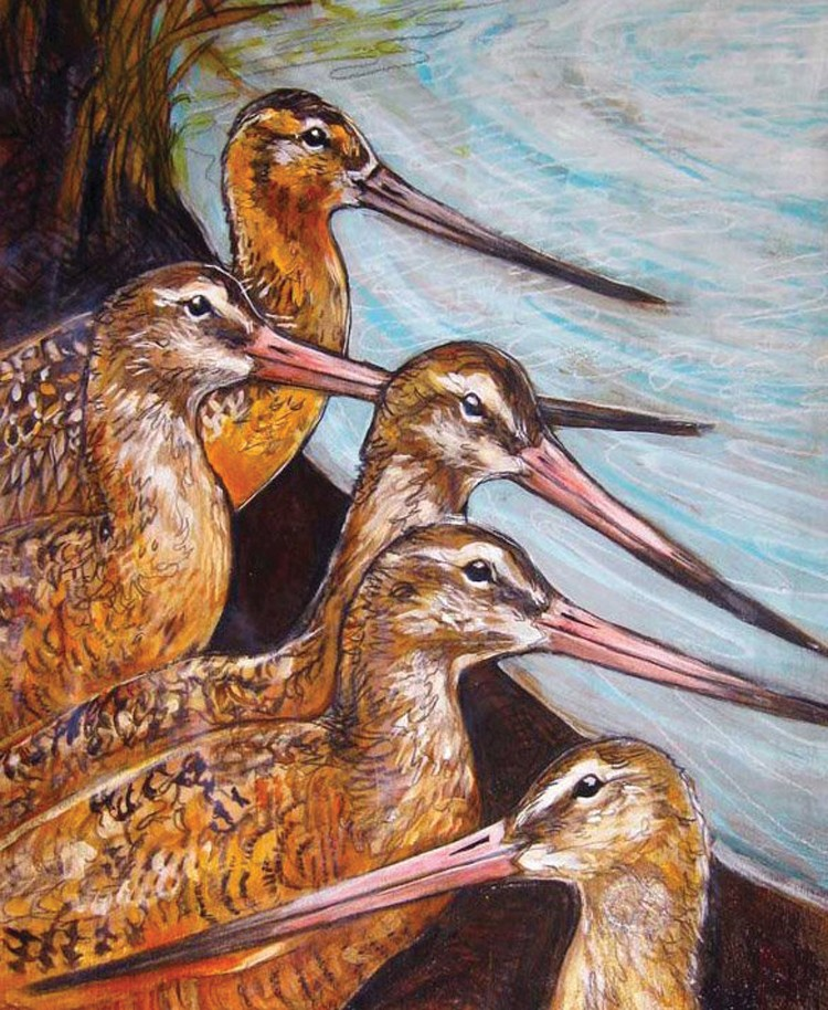 GODWIT DAYS POSTER ART BY ALLISON REED
