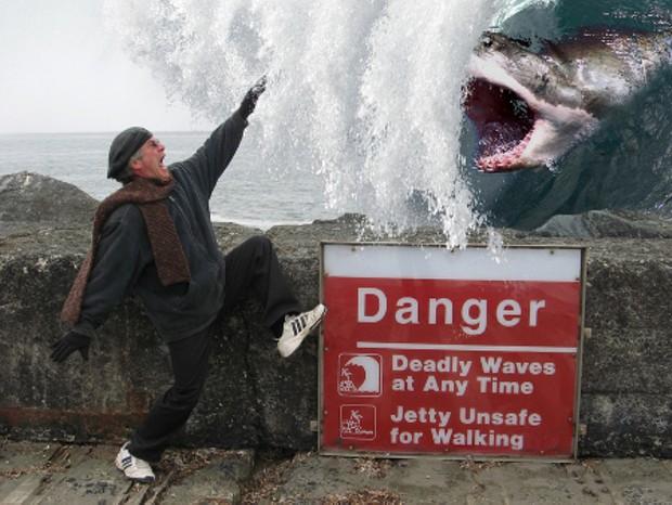 sneaker-wave-shark.jpg