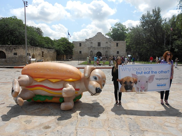 puppy_at_the_alamo-1.jpg