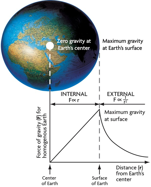The force of gravity, and hence your weight, increases linearly (falsely assuming uniform density) from zero at Earth's center to maximum at the surface, then decreases according to the inverse square law.