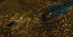 The glitter bombing of Smaug in THE HOBBIT: THE DESOLATION OF SMAUG