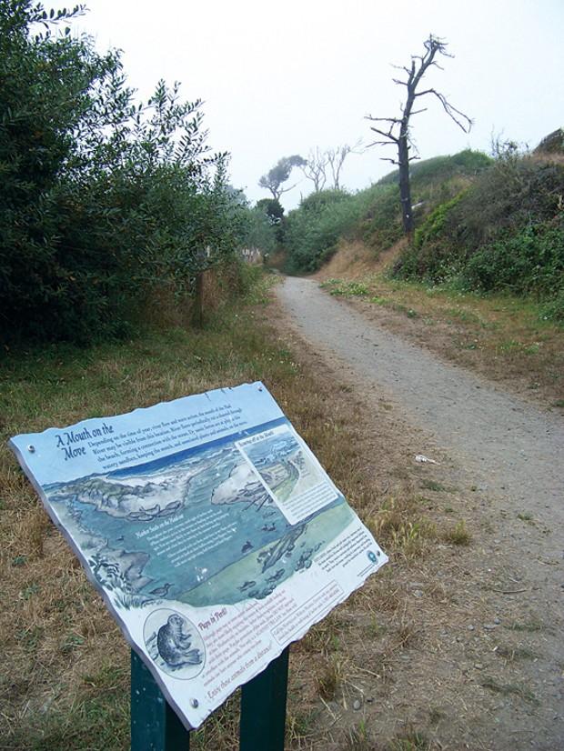 The Hammond Trail - PHOTO BY HEIDI WALTERS