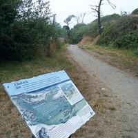 Best Trail