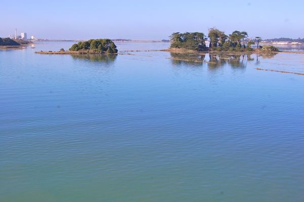 king-tide-humboldt-photo-by-andrew-goff-1.jpg