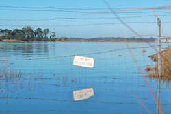 king-tide-humboldt-2012-photo-by-andrew-goff.png