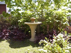 PHOTO BY GENEVIEVE SCHMIDT - The rough texture on the edge of this birdbath provides easy perching.