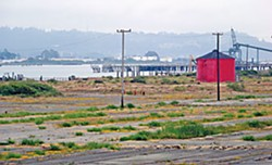 The southern end of the Redwood Marine Terminal. Photo by Heidi Walters