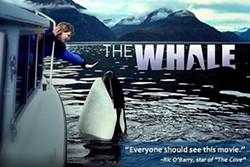 9f1295ff_whale1.jpg