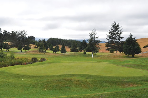 Thirteenth green at Redwood Empire. - PAMELA LONG