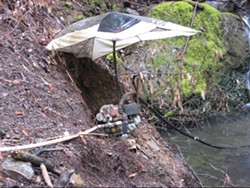 "COURTESY OF THE CALIFORNIA DEPARTMENT OF FISH AND GAME. - ""This photo is classic,"" Jane Arnold of Fish and Game wrote, ""with fuels and lubricants able to go in the water, no fish screen etc.""  It was taken in the South Fork Eel watershed, on a tributary that has steelhead trout."