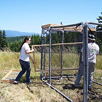 Fixing the World Tiana Williams (left) and Chris West assemble the turkey vulture trap pieces on a grassy plateau in the Bald Hills. The trap is surrounded by an electric fence, enhanced with wire net laid on the perimeter, to keep bears away from the bait. Photo by Heidi