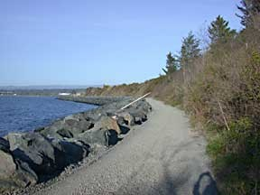 Trail along King Salmon Beach. Photo by Helen Sanderson.