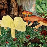 'Shrooms, Beautiful 'Shrooms