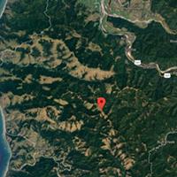 After Several Arrests, Logging Protest Planned for Thursday