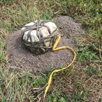 Homemade Explosive Device Found in McKinleyville Field