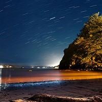 North Coast Night Lights: Reflections From Trinidad