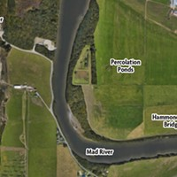 Spawning a Solution for McKinleyville's Wastewater