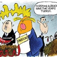 This years turkey