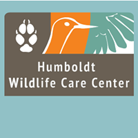 Humboldt Wildlife Care Center Receiving CDFW Grant