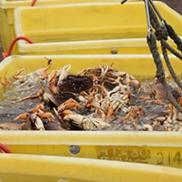 Rough Seas Delaying Crab Pot Deployment