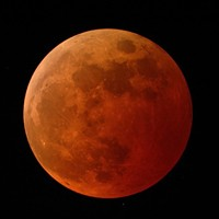 Catching a Glimpse of the 'Super Flower Blood Moon' Lunar Eclipse