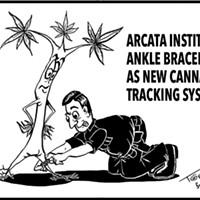 Cannabis Tracking?