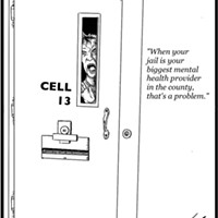 Cell 13