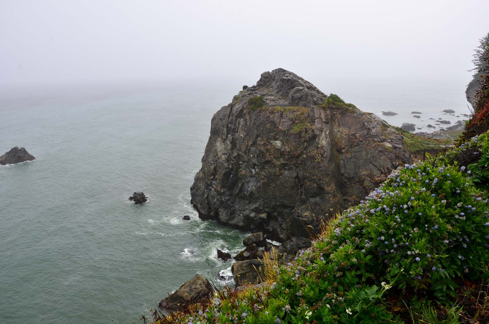 Hike out to the point at Patrick's Point State Park. - DREW HYLAND