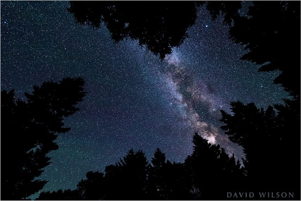 A still without the star trails. - DAVID WILSON