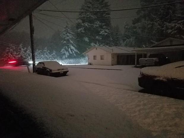 More snow in McKinleyville. - KALI COZYRIS