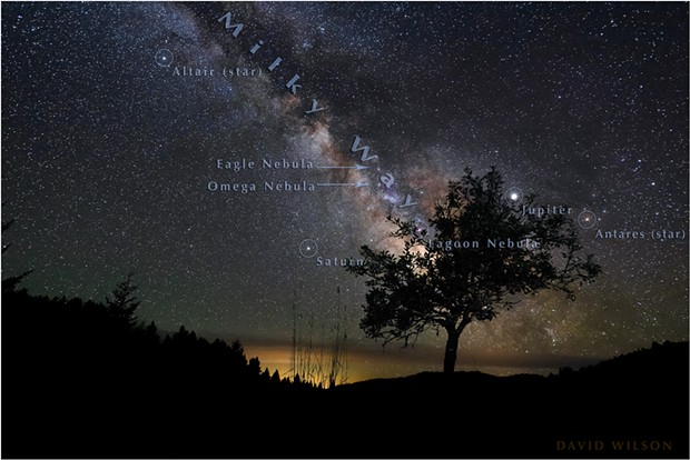 An old, stunted pear tree abides in its nightly vigil beneath the Milky Way. The tree lives in Southern Humboldt County, California, but the far ridge line is in Mendocino County. - DAVID WILSON